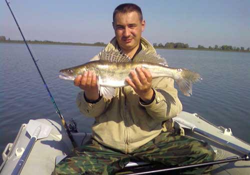 какую рыбу ловить на финском заливе